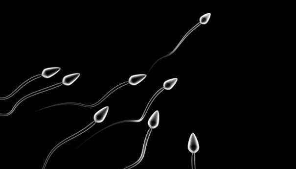 Không có tinh trùng có ảnh hưởng gì không? 1