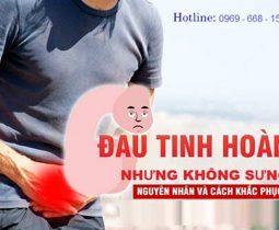 dau-tuc-tinh-hoan-nhung-khong-sung-la-bi-lam-sao