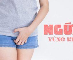 ngua-vung-kin